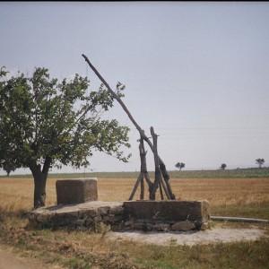 Köyümüzden Fotoğraflar